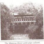 mapusa river2